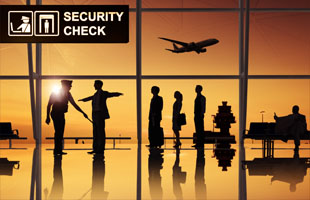 Airport/Port Security